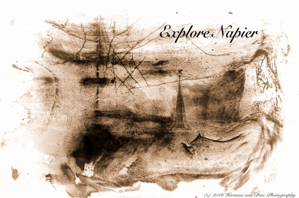 explore napier VIDA